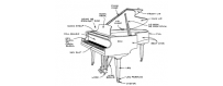 Piano teclado y organo (organologia)